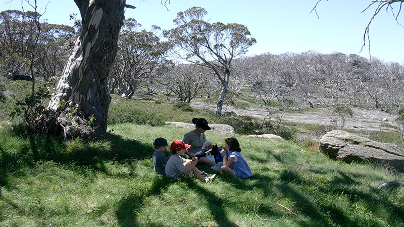 Thredbo in summer