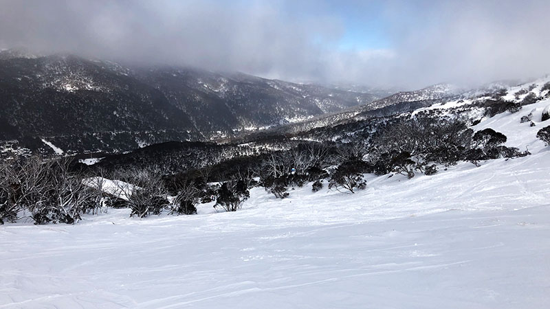 Thredbo powder day